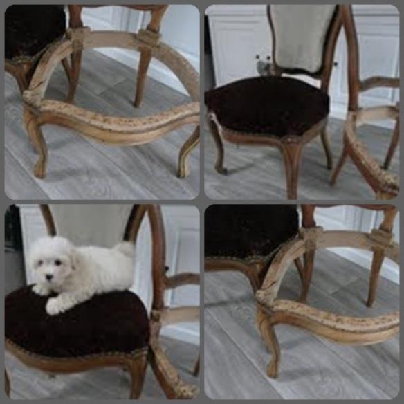 montage chaise avant